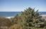 44640 Oceanview Court, Neskowin, OR 97149 - View