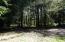 19585 Siletz Hwy, Siletz, OR 97380 - treed area
