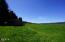 19585 Siletz Hwy, Siletz, OR 97380 - Hay Field