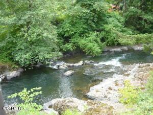 NO NUMBER N Salmon Berry Lane, Rose Lodge, OR 97368 - FISHING HOLE