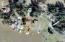 4146 NE 20th St, Otis, OR 97367 - Aerial of 4146 NE 20th St