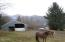31455 US-101 S, Cloverdale, OR 97112 - Horse Property