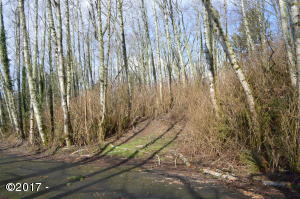 TL 307 Brooten Hill Road, Pacific City, OR 97135 - Lot from Street