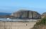 9189 NW Heron St, Seal Rock, OR 97376 - Seal Rock State Park