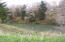 16835 Siletz Hwy, Siletz, OR 97380-9716 - River frontage 2nd view
