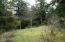 435 Siletz View Lane, Gleneden Beach, OR 97388 - Back yard