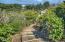 5 Ridge Crest Ln, Gleneden Beach, OR 97388 - 25-IMG_1440_1_2-Edit-1 (2)