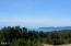 32205 Pine Rd, Pacific City, OR 97135 - view from behind house