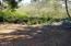 6250 SW Jetty Ave, Lincoln City, OR 97367 - Back yard