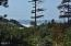 1250 SW Sailfish Loop, Waldport, OR 97394 - Ocean View from Sun Room!