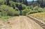 1636 Little Switzerland Rd, Tidewater, OR 97390 - Lot 1601 Boat Launch