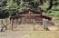 1636 Little Switzerland Rd, Tidewater, OR 97390 - Barn