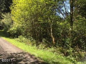 0 SE Lucy Ln, Waldport, OR 97394 - Off Lucy Lane