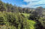 171 NW 70th St, Newport, OR 97365 - Forest views