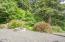 3700 NE Megginson St, Newport, OR 97365 - Forest view