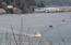 911 SW 12th St, Newport, OR 97365 - Watch the Boats