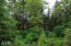 2646 NE 36th Dr, Lincoln City, OR 97367 - Forest View