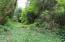 6014 Salmon River Hwy, Otis, OR 97368 - IMG_7804