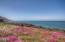 150 SW Nesting Glade, Depoe Bay, OR 97341 - Ocean front