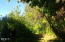 1687 Moonshine Park Rd, Logsden, OR 97357 - 1687  Moonshine Park Rd