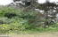 4722 BLK SW Coast Ave, Lincoln City, OR 97367 - 20170627_113943