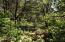 1905 NW Bayshore Dr, Waldport, OR 97394 - Level Treed Lot