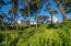 2513 NW Inlet Ave, Lincoln City, OR 97367 - Tree View