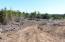 3425 SW Fernwood Ln, Waldport, OR 97394 - Eastern portion of acreage