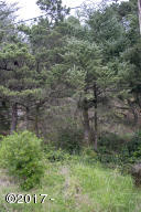 1605 NW Bayshore Dr, Waldport, OR 97394 - Lot