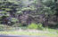 1605 NW Bayshore Dr, Waldport, OR 97394 - From Street