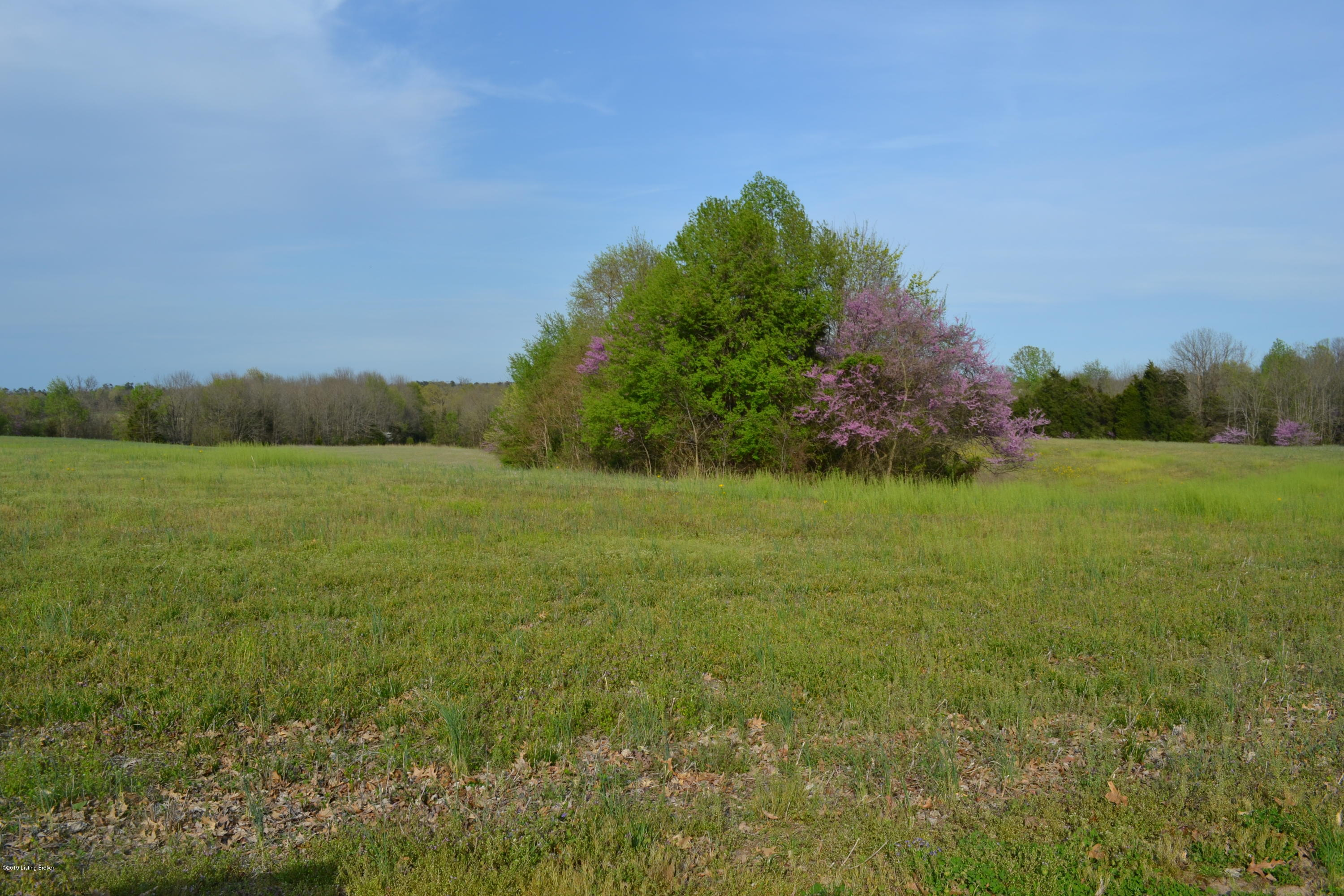330 Gregory Church Rd, Coxs Creek, Kentucky 40013, 2 Bedrooms Bedrooms, 4 Rooms Rooms,1 BathroomBathrooms,Residential,For Sale,Gregory Church,1530986