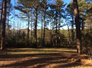 Property for sale at 1010 Sunset, Carthage,  NC 28327
