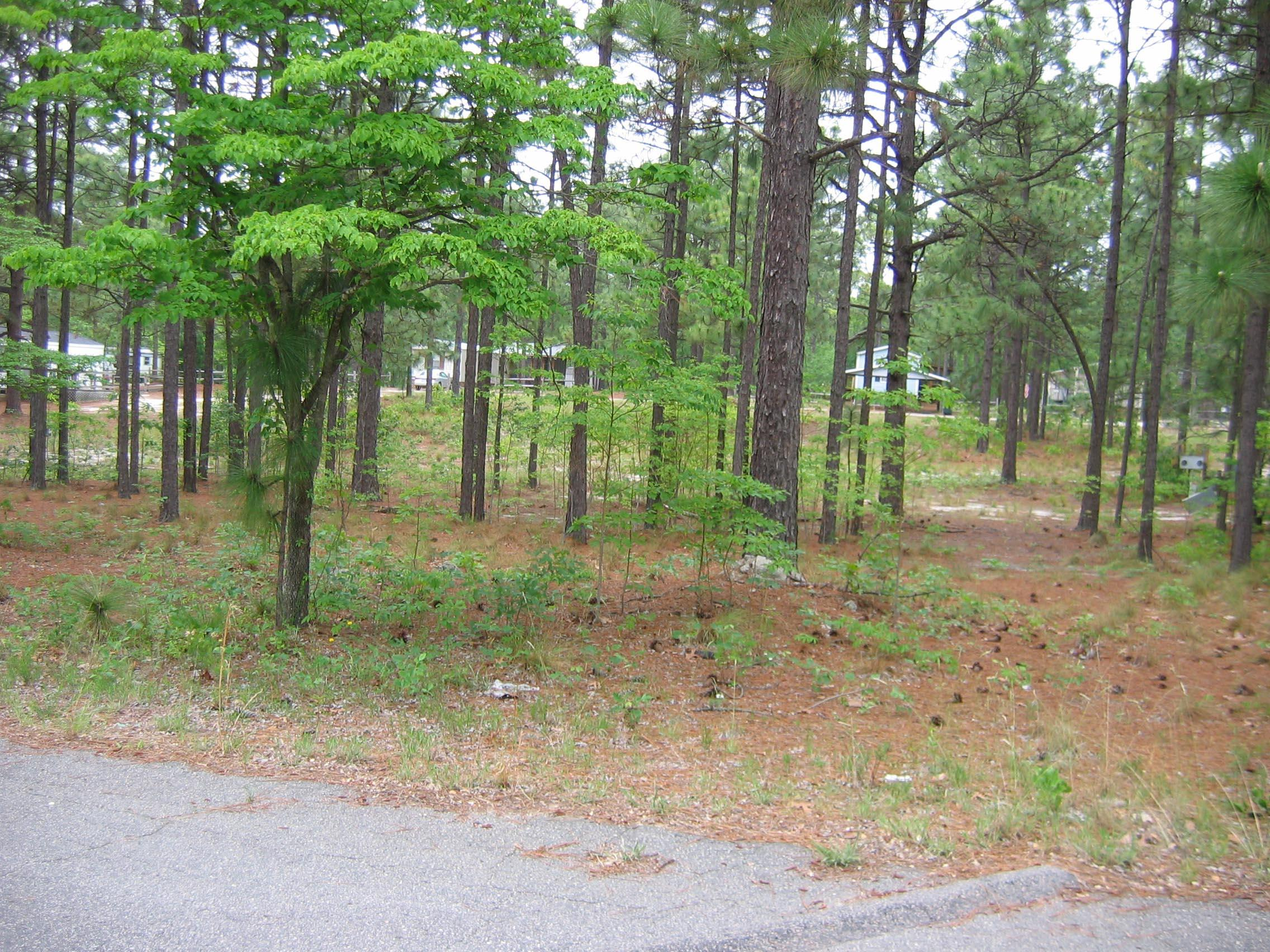 Ridgewood Drive, Southern Pines, North Carolina 0 Bedroom as one of Homes & Land Real Estate