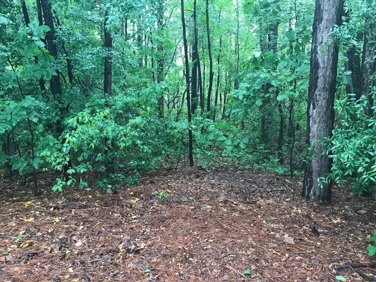 Gun Club Drive  339, Pinehurst in Moore County, NC 28374 Home for Sale