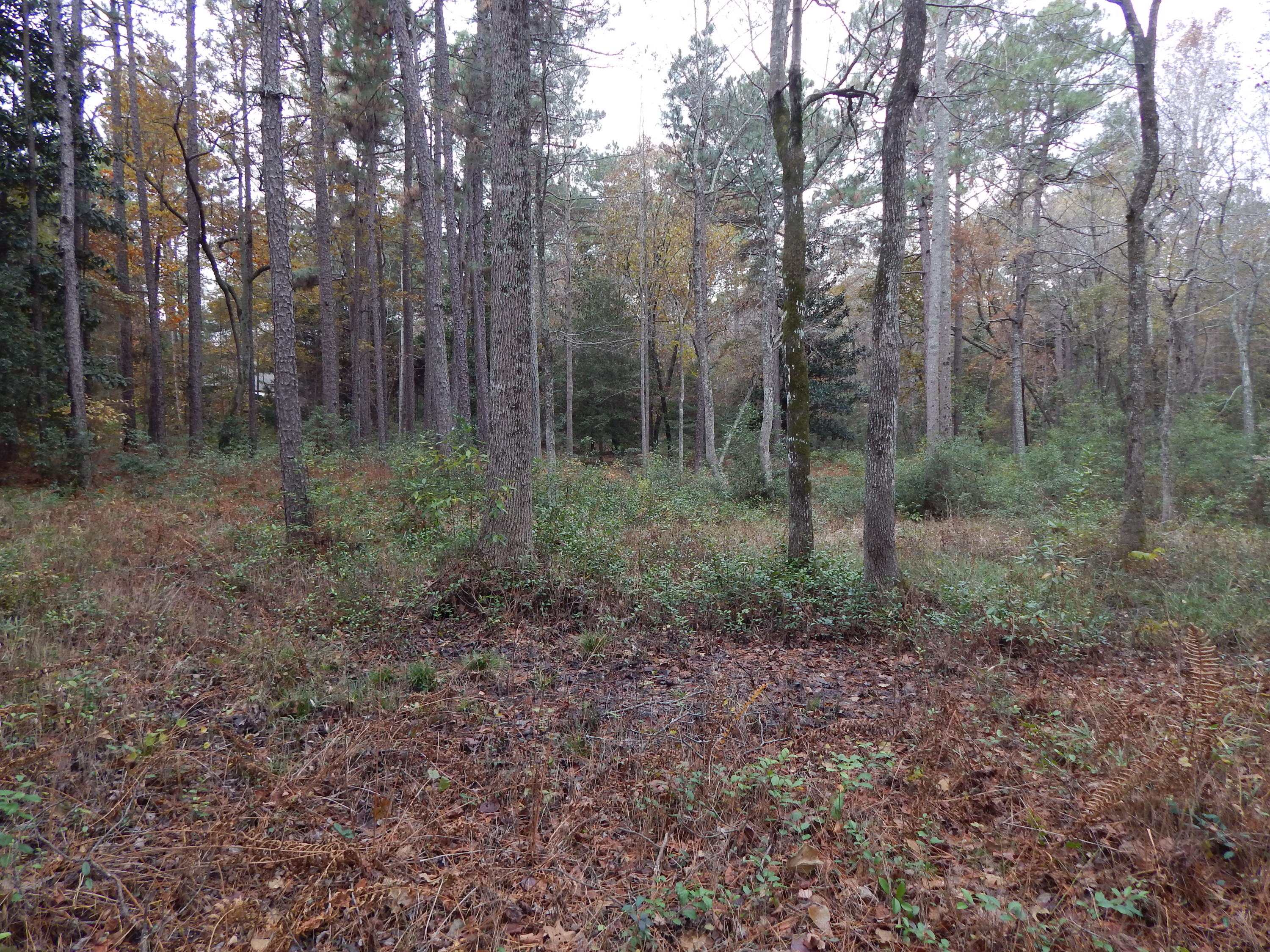 Stoneykirk Drive  3071R, Pinehurst in Moore County, NC 28374 Home for Sale
