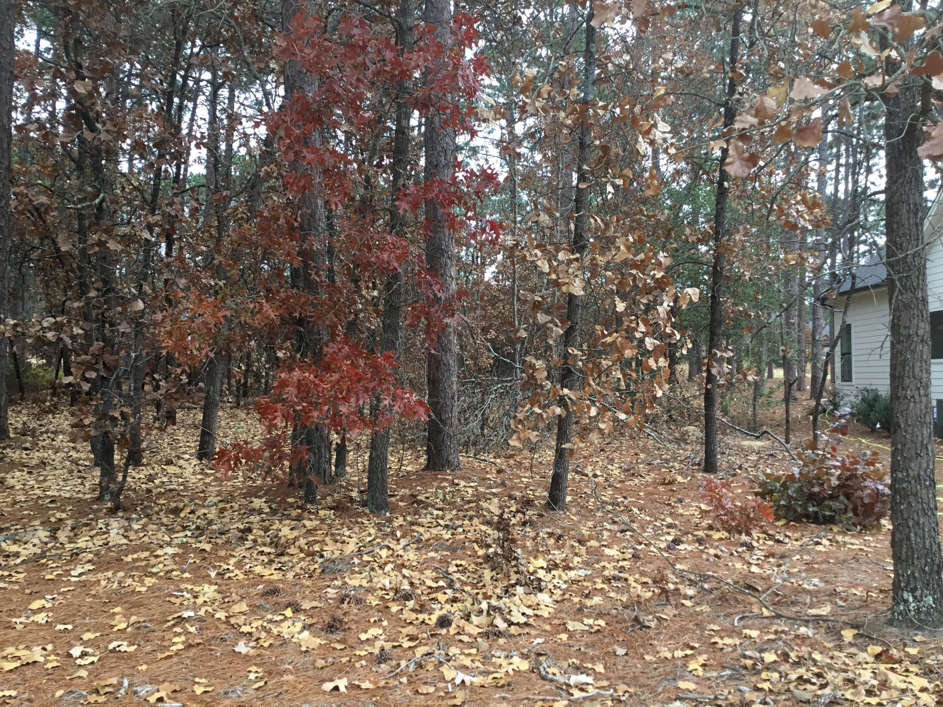 Greencastle Drive  363, Pinehurst in Moore County, NC 28374 Home for Sale