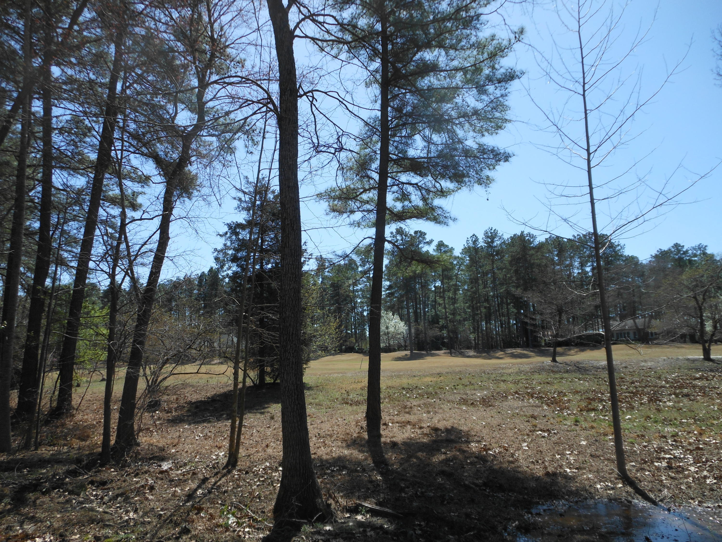Mcmichael Drive  2538R, Pinehurst in Moore County, NC 28374 Home for Sale