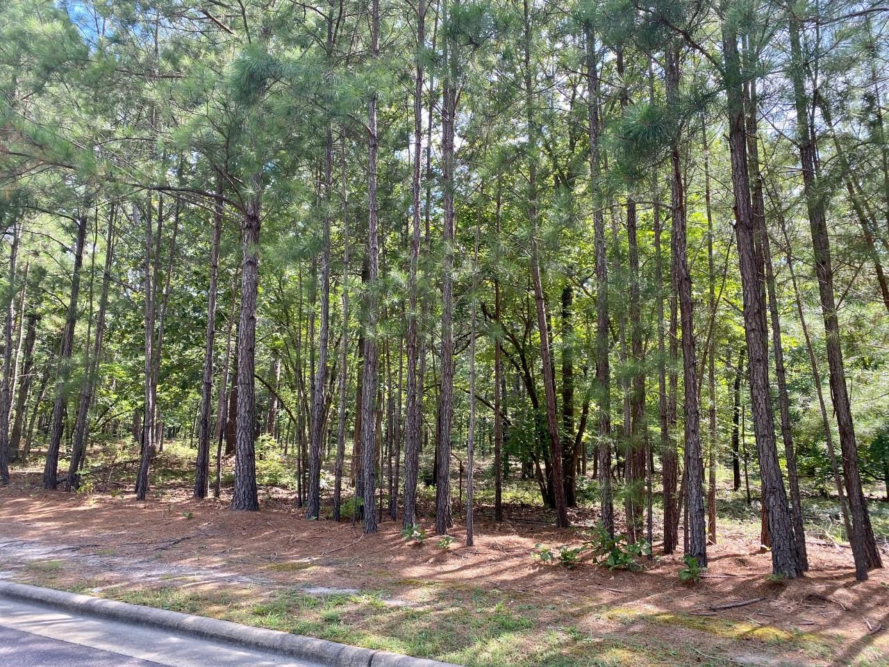 Meyer Farm Drive  911R, Pinehurst in Moore County, NC 28374 Home for Sale