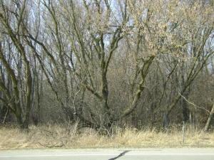 0 Spring ST, Mount Pleasant, 53406, WI