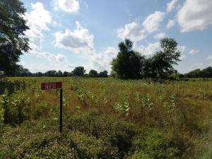 Property for sale at N831 County Road H, Palmyra,  WI 53156