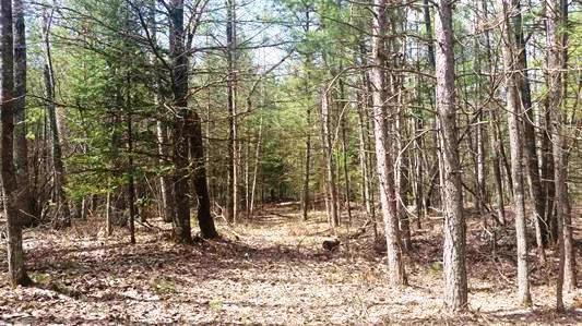 Lt50 Menominee Shores Dr, Wagner, Wisconsin 54177, ,Vacant Land,For Sale,Menominee Shores Dr,1565008