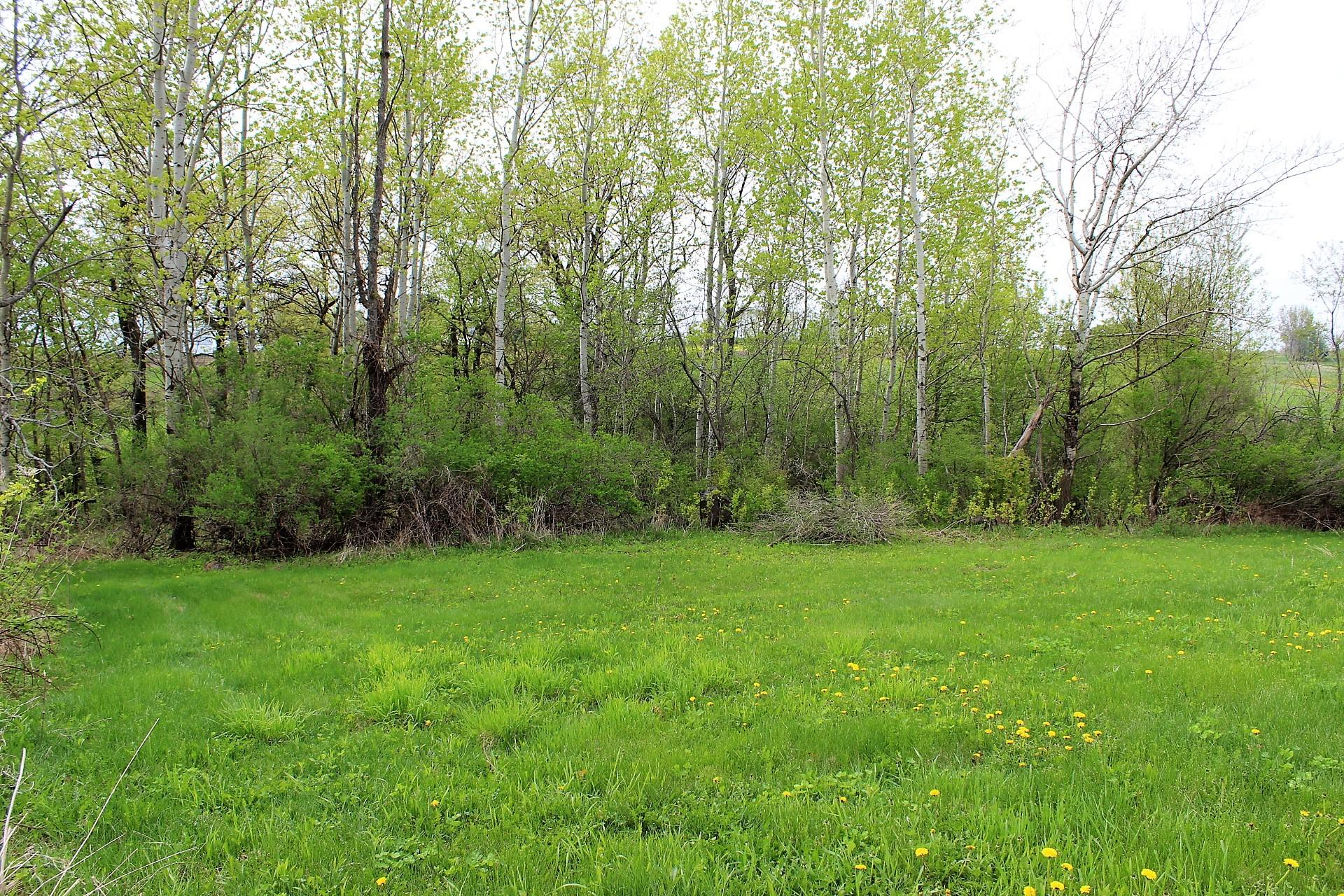 Lot 63 Golfview Cir, Viroqua, Wisconsin 54665, ,Vacant Land,For Sale,Golfview Cir,1577239