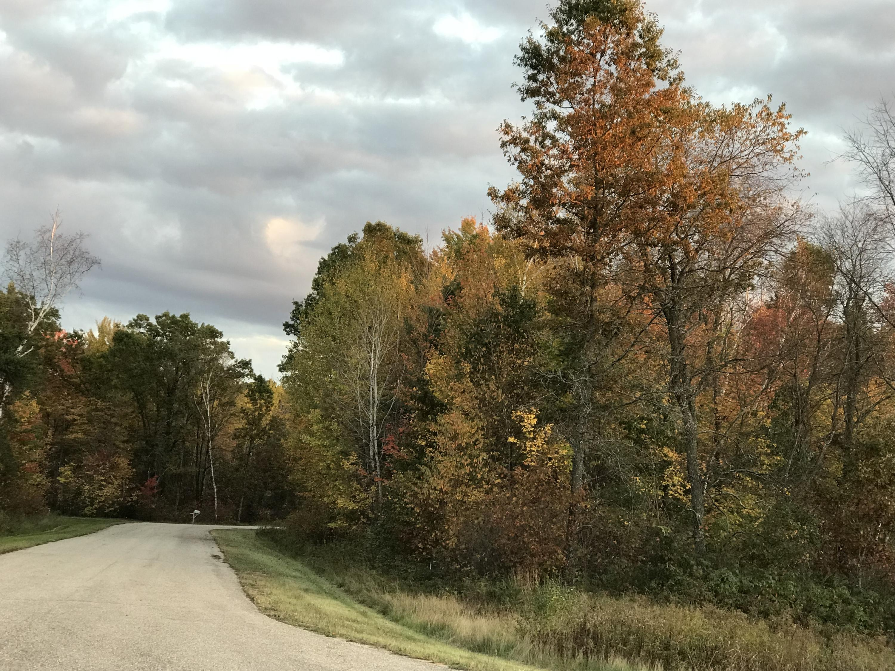 Lt1 Ridgeview Ct, Stephenson, Wisconsin 54114, ,Vacant Land,For Sale,Ridgeview Ct,1591041