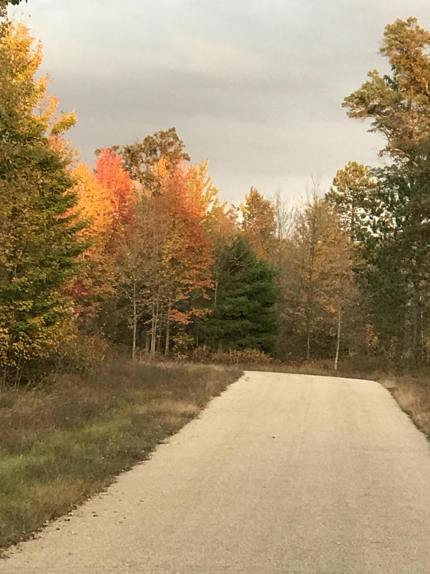 Lt8 Finelli Ave, Stephenson, Wisconsin 54114, ,Vacant Land,For Sale,Finelli Ave,1591051