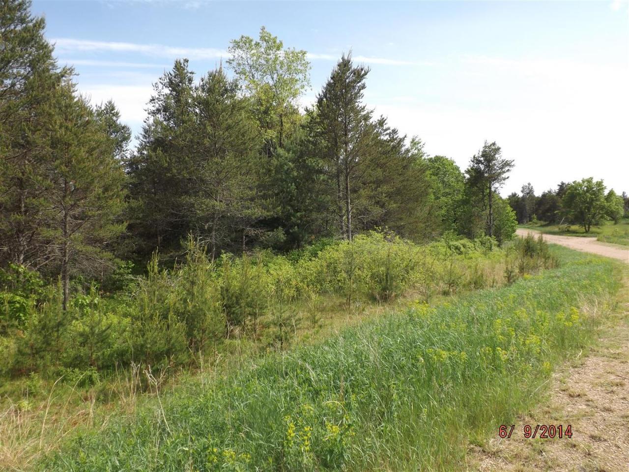 Lt 10 Dutch Rush Run, Stephenson, Wisconsin 54114, ,Vacant Land,For Sale,Dutch Rush Run,1583023