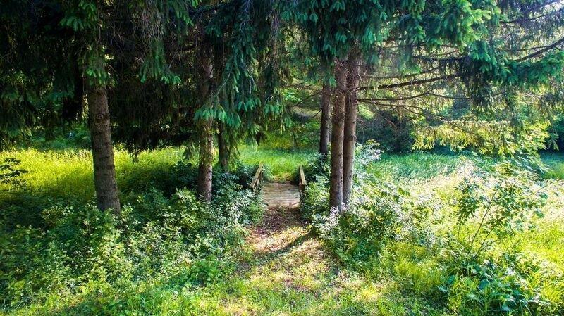 Lot 29 Oak Ridge Ct, Lafayette, Wisconsin 53121, ,Vacant Land,For Sale,Oak Ridge Ct,1598804