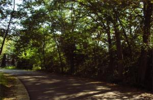 Lt77 Woods Ln, La Grange, Wisconsin 53121, ,Vacant Land,For Sale,Woods Ln,1599056