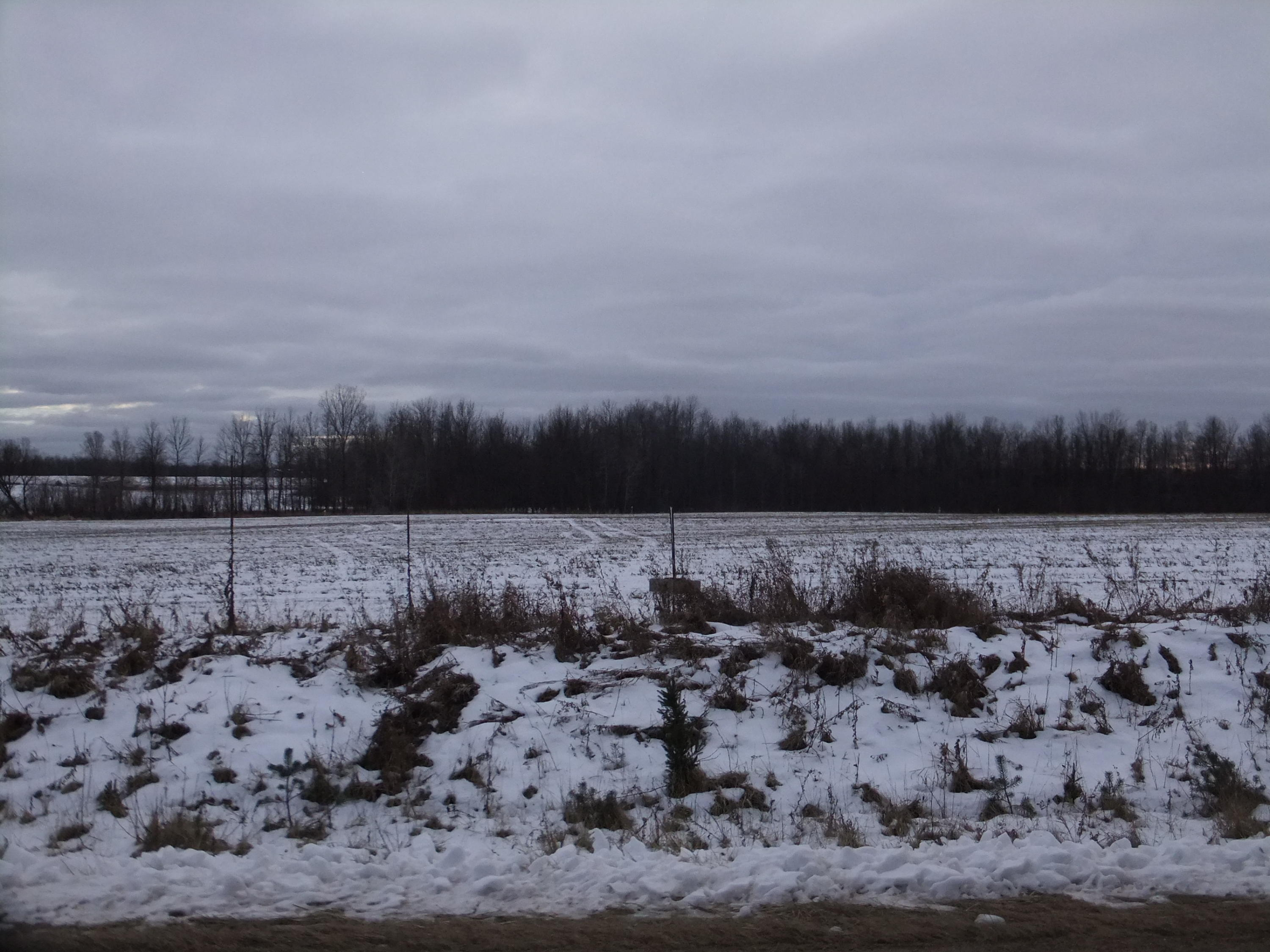7.82 Acres 3.5 Rd, Menominee, Michigan 49858, ,Vacant Land,For Sale,3.5 Rd,1619027