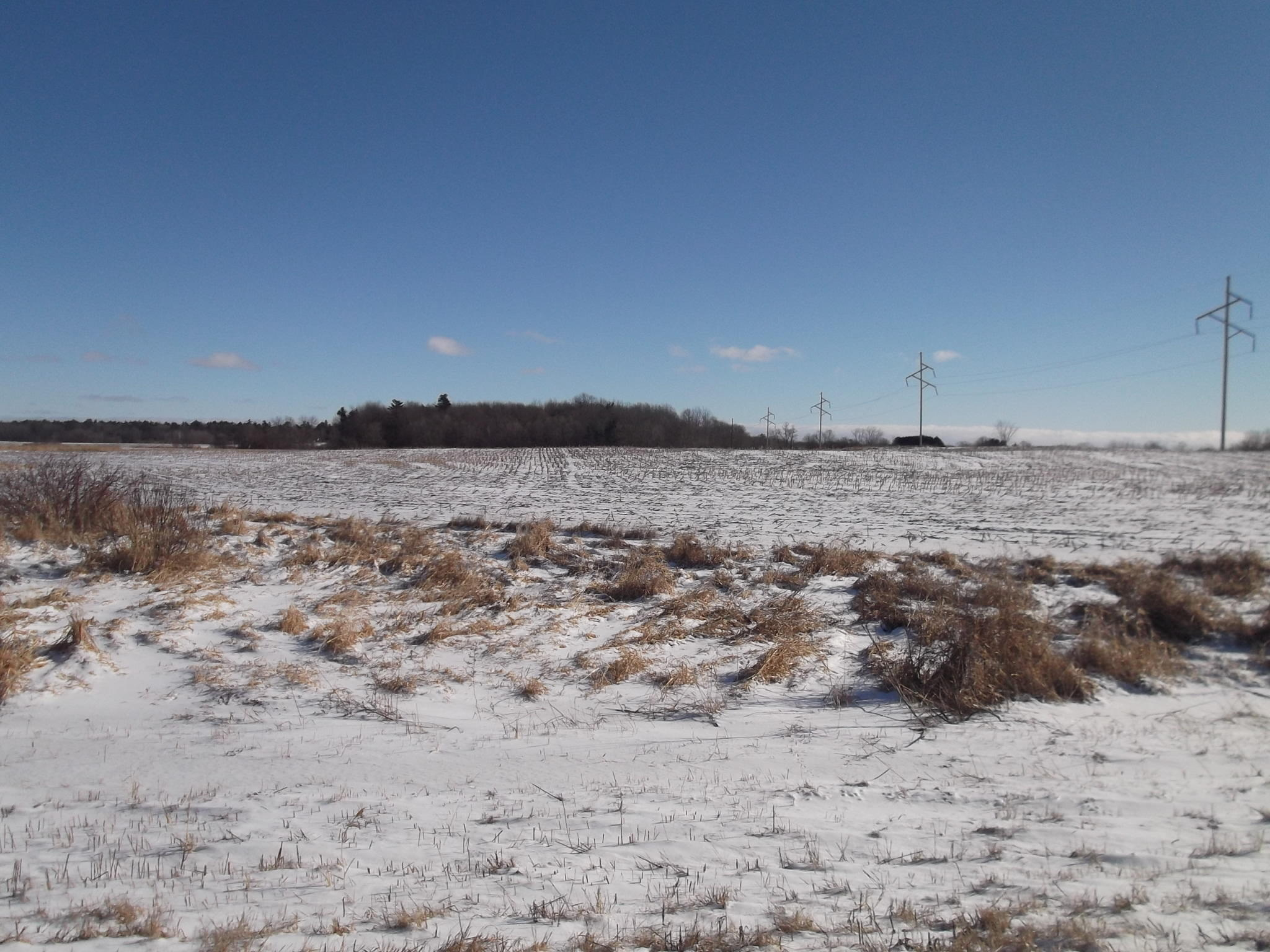 Lt99 Aspen Rd, Maple Grove, Wisconsin 54230, ,Vacant Land,For Sale,Aspen Rd,1620502