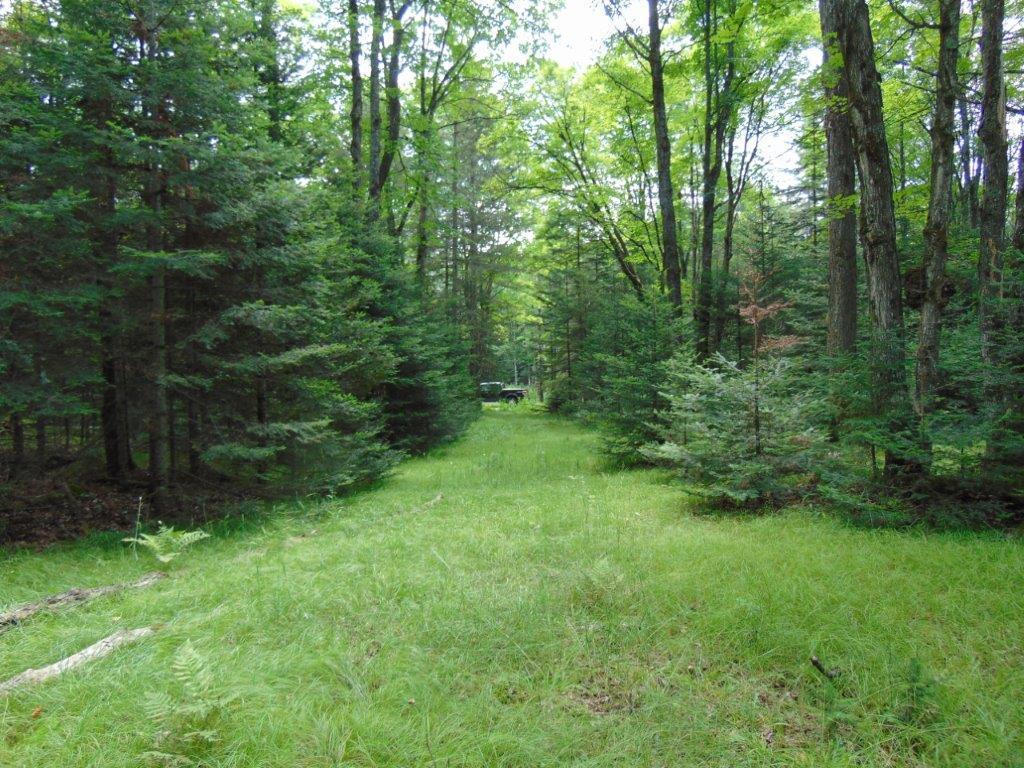 9674 Red Fox, Presque Isle, Wisconsin 54557, ,Vacant Land,For Sale,Red Fox,1625452